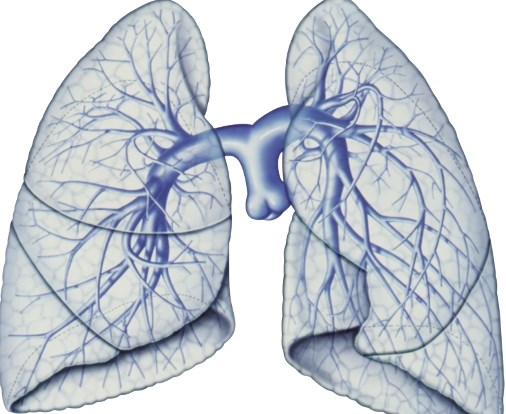 Connective Tissue Disease-Associated Pulmonary Arterial Hypertension Treatments