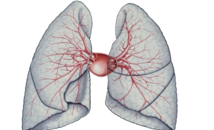 Pulmonary Artery-to-Aorta Ratio May Predict Survival in Idiopathic Pulmonary Fibrosis