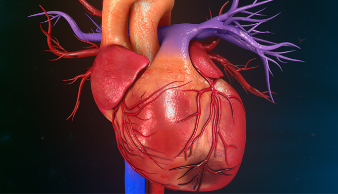 Image result for gout cardiovascular