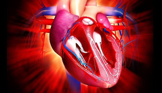 Management of Cardiovascular Risk Factors Still Key for People With RA