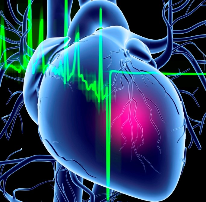 Wearable cardioverter defibrillators are safe and effective for pediatric patients at risk for sudden cardiac death.