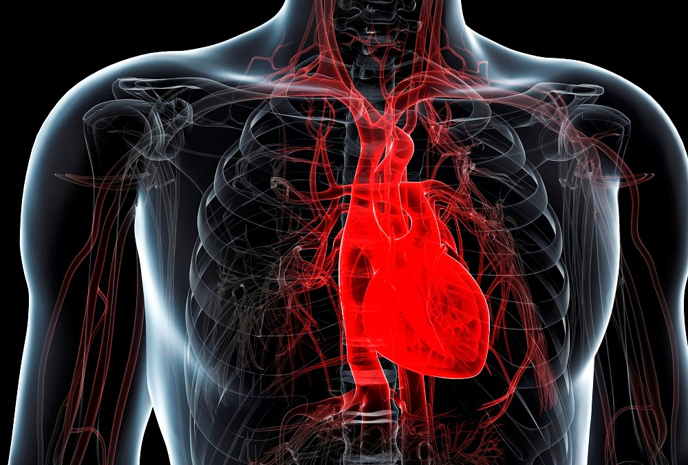 SHPT May Predict Left Ventricular Diastolic Dysfunction