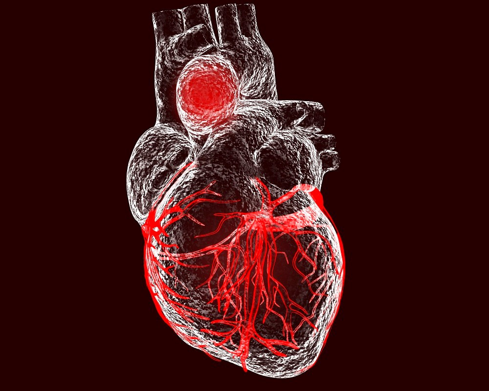 Chronic Pain Linked to Impaired Cardiovascular Regulation