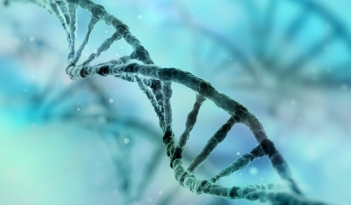 Genetic Predisposition to Early-Onset AF Noted Across Racial and Ethnic Groups