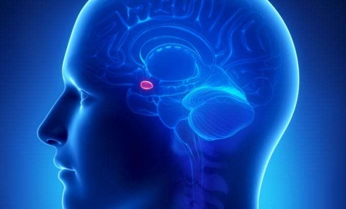 Noninvasive Brain Stimulation of Prefrontal Cortex in Trait Anxiety