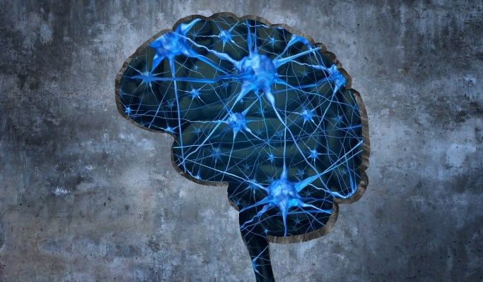Heart Failure, Atrial Fibrillation: Possible Markers for Mild Alzheimer's