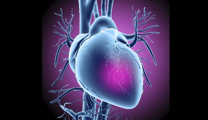 Nearly 600 patients with acute myocardial infarction were examined.