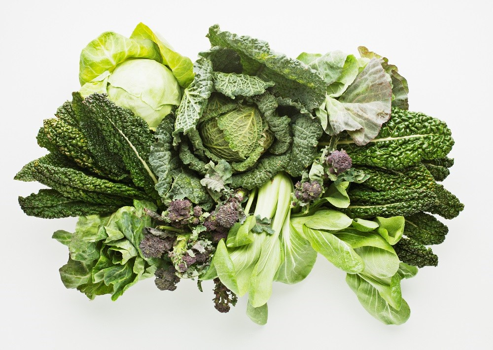 Heart Failure Risk May Be Reduced With a Plant-Based Diet