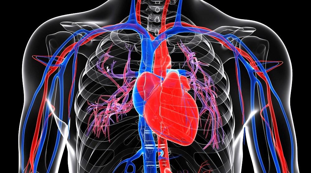 Veno-Arterial Extracorporeal Membrane Oxygenation Improves Survival in Pulmonary Embolism