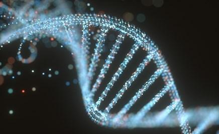 Combinatorial Pharmacogenetics Useful in Treatment for Depression