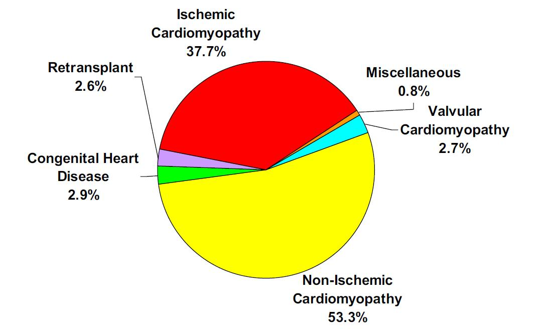 Selection of patients for cardiac transplantation causes of heart disease preceding heart transplant ccuart Choice Image